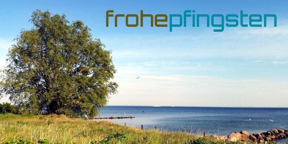 """Großer Baum auf einem Grünstreifen am Ostseeufer in der Nähe der Brücke über die Saalbeek bei klarem, blauen Himmel und dem Schriftzug """"Frohe Pfingsten"""""""