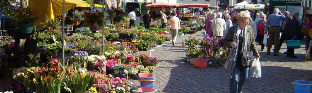 Neustädter Wochenmarkt
